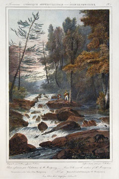 Lower Falls near the residence of Mr. Montgomery. Jacques Gerard Milbert.