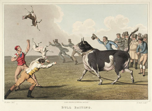 The National Sports of Great Britain. Henry Alken.