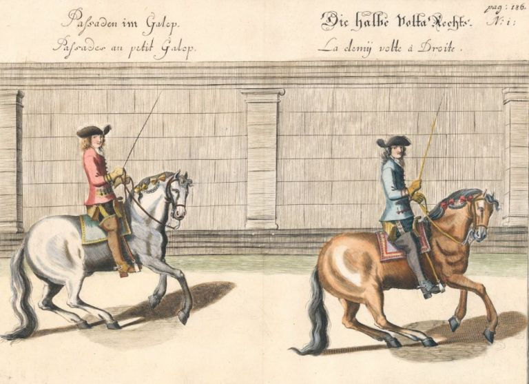 Plate 40. Palisades au petit Galop. William of Newcastle, Newcastle.