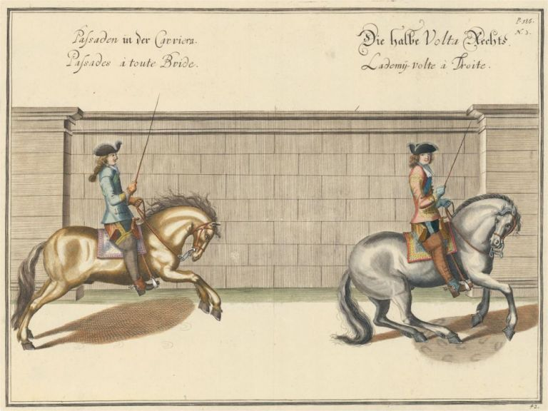 Plate 42. Palisades a toute Bride. William of Newcastle, Newcastle.