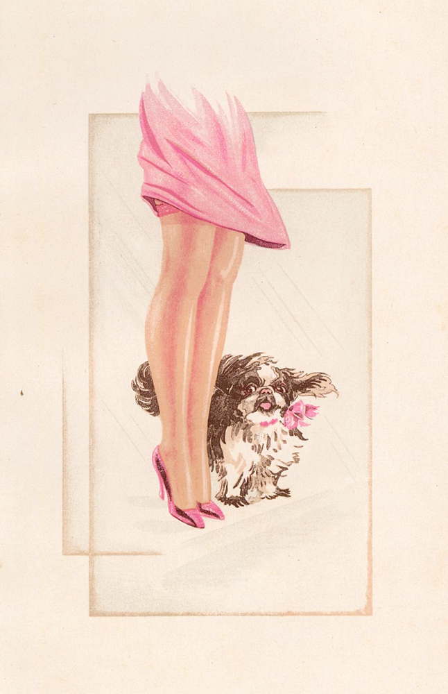 137. Woman with puppy. Stockings Advertisement Illustration. German School.