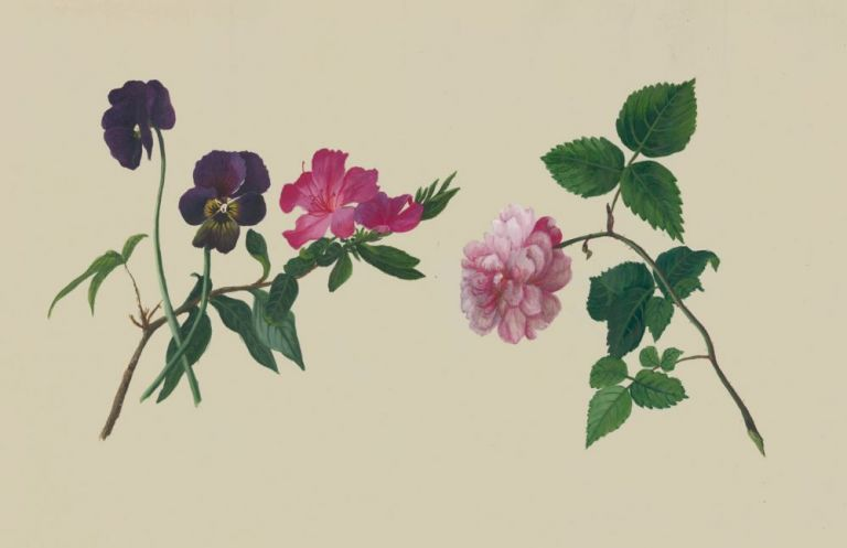 A Flower Study: Pansies, Azalea, Rose. Adolphe Jean-Jacques Reques.