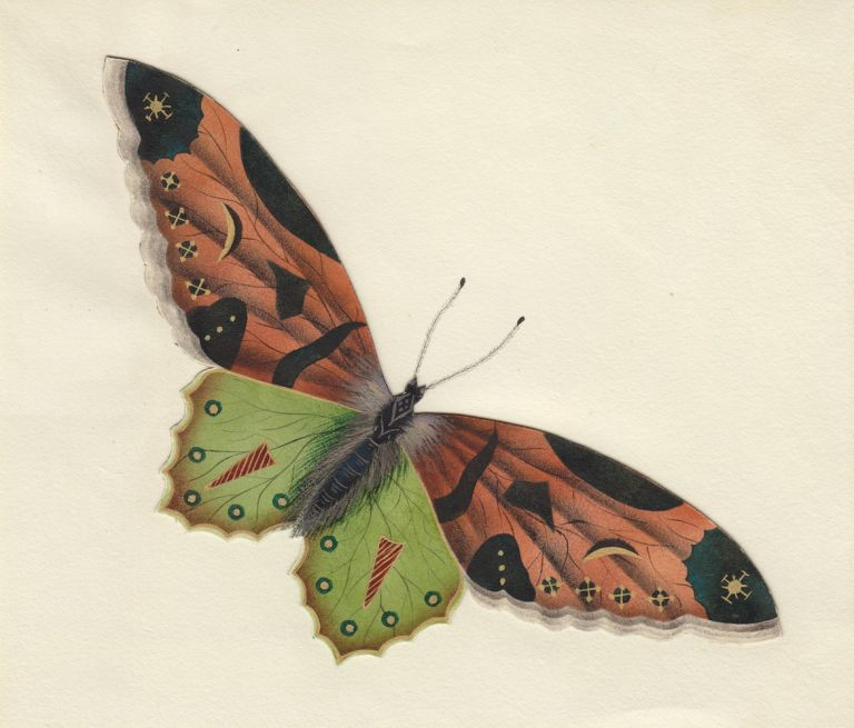 Decorative butterfly. Butterflies and Insects. Sara Anne Moore.