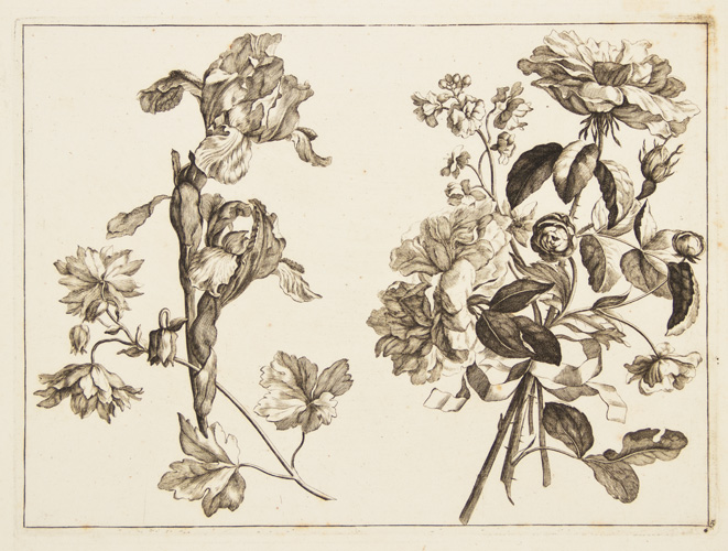 Blumen Duft. Set of 8 engravings. Johann Christoph Weigl.