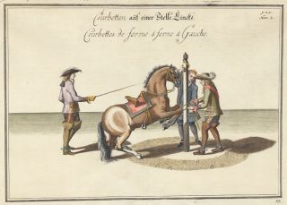 Plate 54. Courbettes de ferme a ferme a Gauche. William of Newcastle, Newcastle