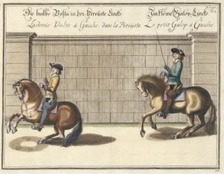Plate 45. Lademie Volte a Gauche. William of Newcastle, Newcastle