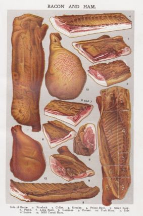 Bacon and Ham. Mrs. Beeton's Book of Household Management. Isabella Beeton