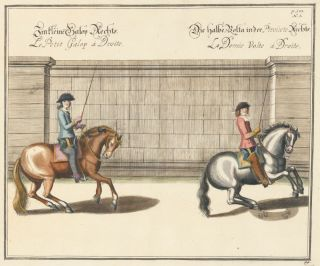 Plate 44. Le Petit Galop a Droite. William of Newcastle, Newcastle
