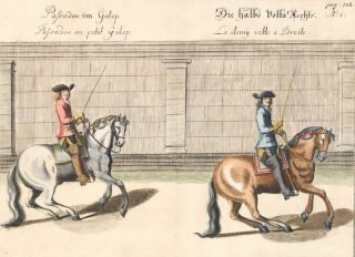 Plate 40. Palisades au petit Galop. William of Newcastle, Newcastle