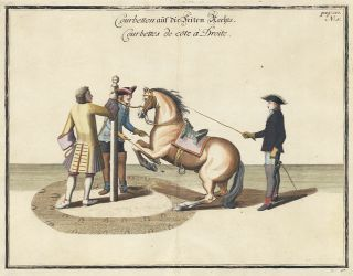 Plate 5. Courbettes de Cote a Droite. William of Newcastle, Newcastle