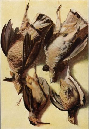 Game Birds. The Grocer's Encyclopedia. Artemas Ward