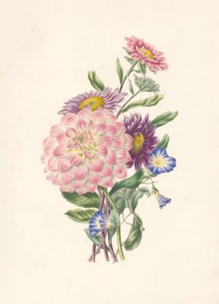Dahlia, China Aster and Covolvulus. Flora's Gems. James Andrews