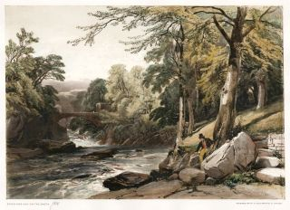 Beech and Ash on the Greta. The Park and the Forest. James Duffield Harding