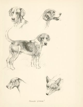 Beagle and Puppies. Reverse: Hounds please. Just Dogs: Sketches in Pen & Pencil.
