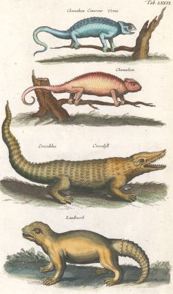 Chamaeleon [Chameleon]; Crocodilus, Crocodyll [Crocodile]; Laudiuerba [extinct or mythical]....