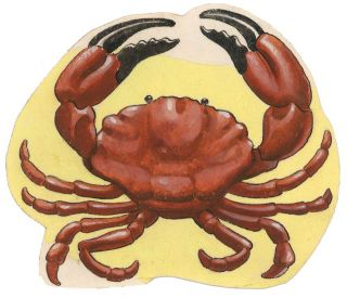 Crab. Unknown.