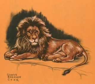 Lion. Zoo Animals. Gladys Emerson Cook