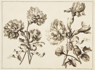 Blumen Duft. Set of 8 engravings.
